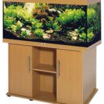 Рекомендаци начинающим аквариумистам