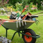 Какие инструменты на первое время нужны для сада